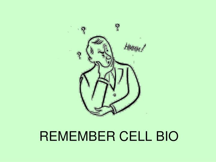 Remember cell bio