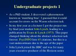 undergraduate projects 1