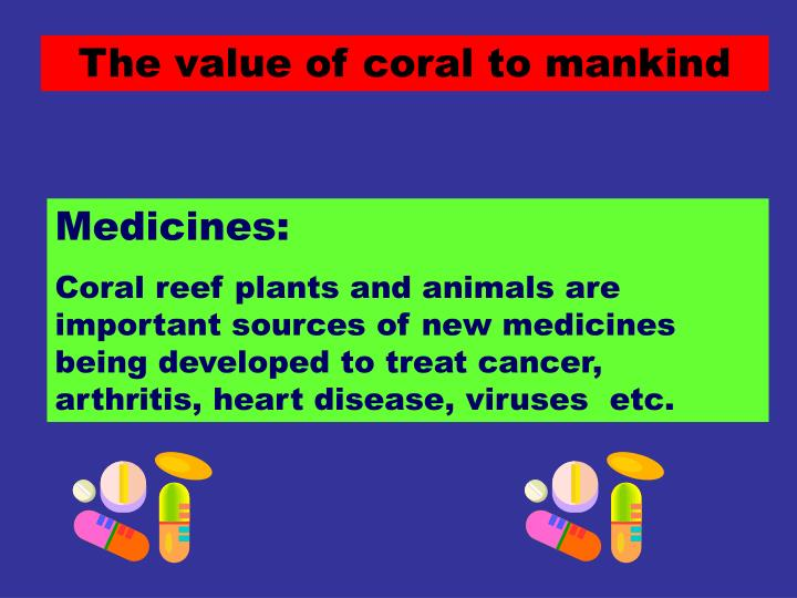The value of coral to mankind