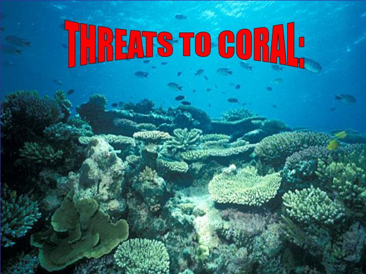 THREATS TO CORAL: