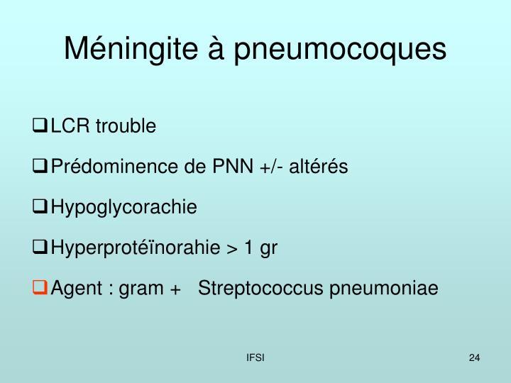 Méningite à pneumocoques