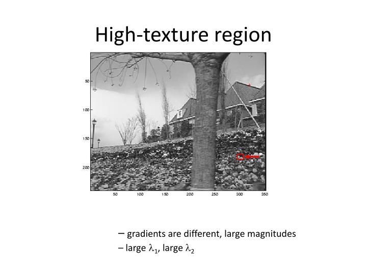 High-texture region