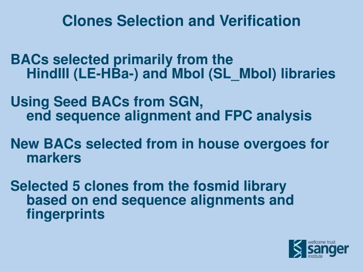 Clones Selection and Verification