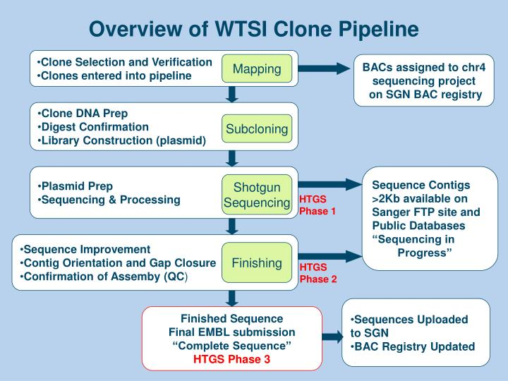 Overview of WTSI Clone Pipeline