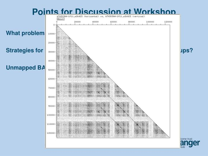 Points for Discussion at Workshop