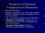 perspective of quantum computation information