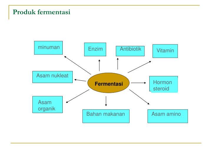 Produk fermentasi