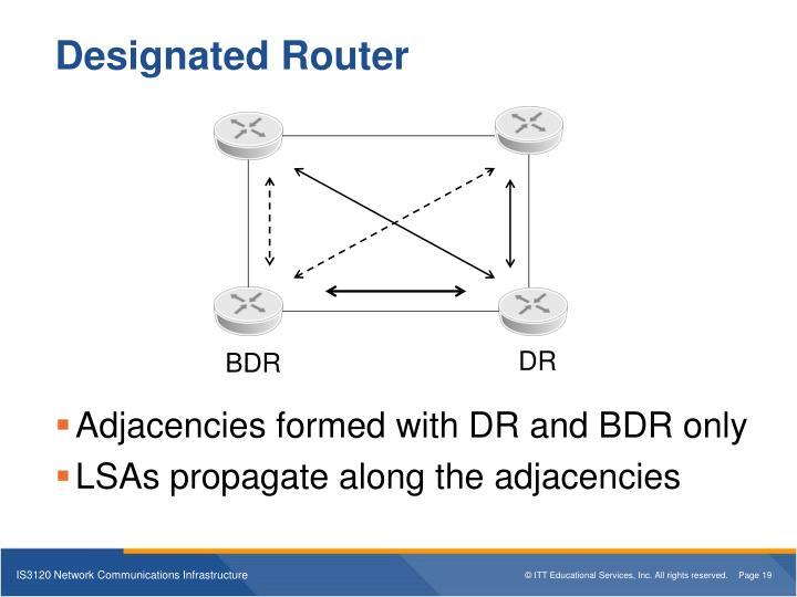 Designated Router