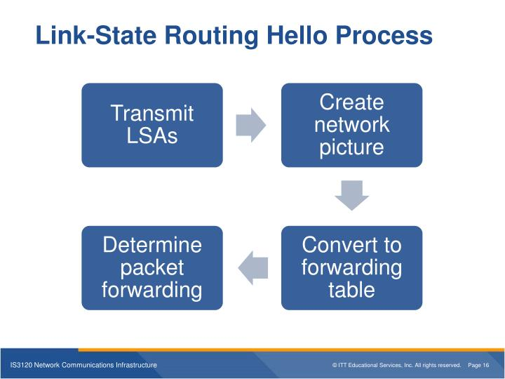 Link-State Routing Hello Process
