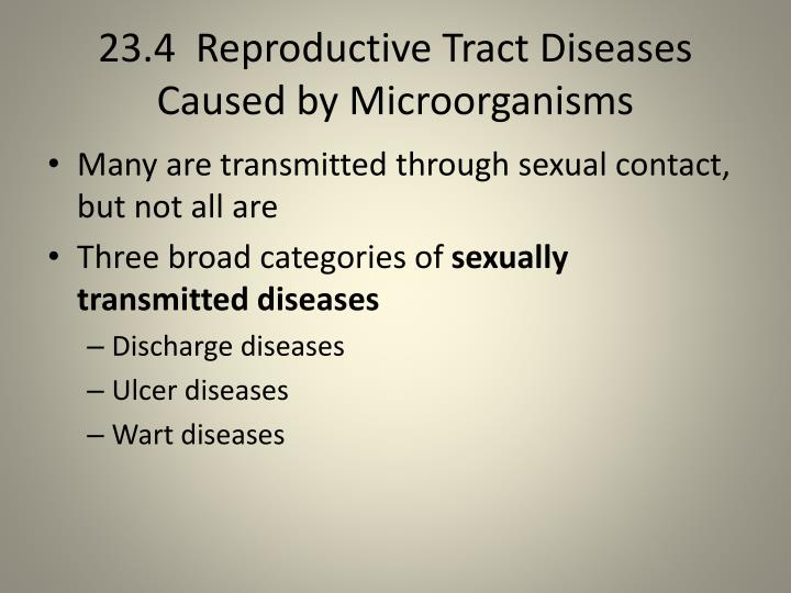 23.4  Reproductive Tract Diseases Caused by Microorganisms