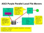 asci purple parallel local file movers