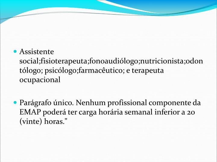Assistente social;fisioterapeuta;fonoaudilogo;nutricionista;odontlogo; psiclogo;farmacutico; e terapeuta ocupacional