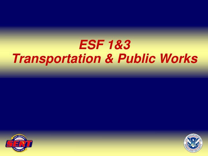ESF 1&3