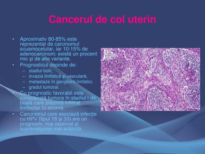 Aproximativ 80-85% este reprezentat de carcinomul scuamocelular, iar 10-15% de adenocarcinom; există un procent mic şi de alte variante.