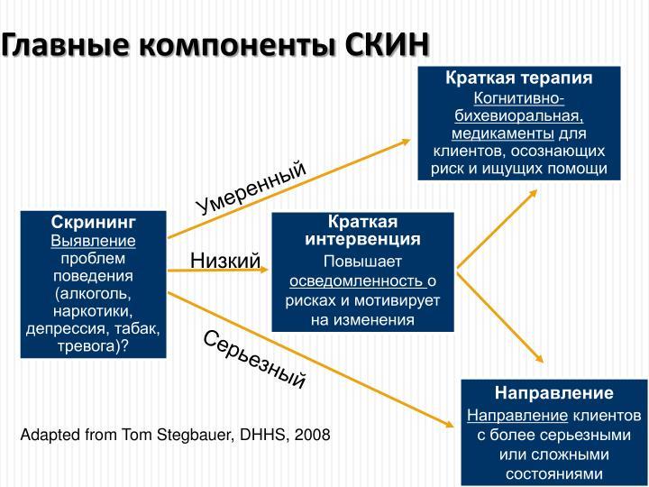 Главные компоненты СКИН