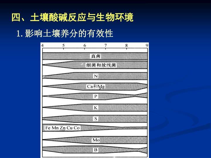 四、土壤酸碱反应与生物环境