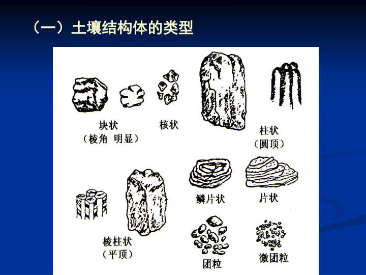 (一)土壤结构体的类型
