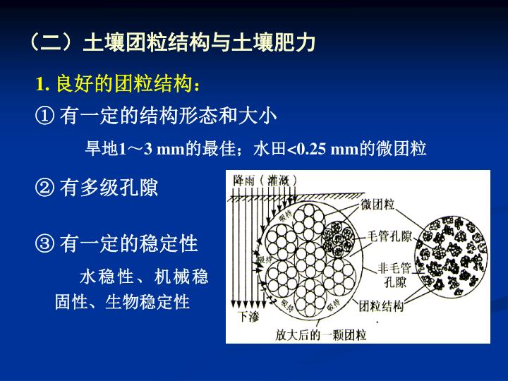 (二)土壤团粒结构与土壤肥力