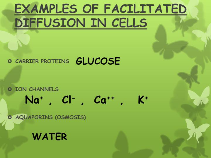 EXAMPLES OF FACILITATED DIFFUSION IN CELLS