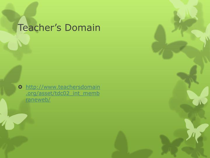 Teacher's Domain