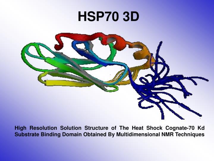 HSP70 3D