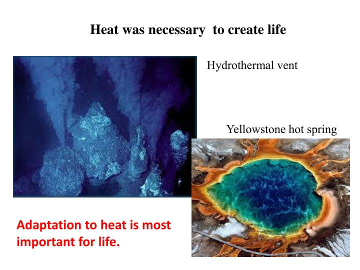 Heat was necessary  to create life