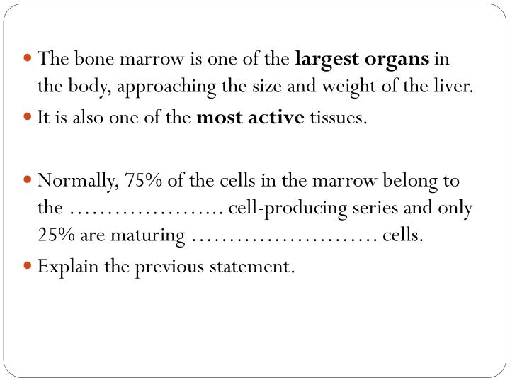 The bone marrow is
