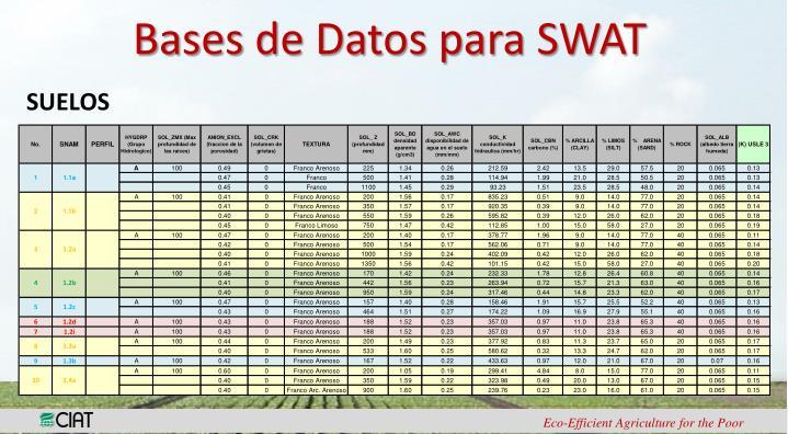 Bases de Datos para SWAT