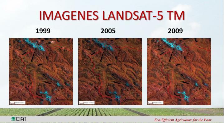 IMAGENES LANDSAT-5 TM