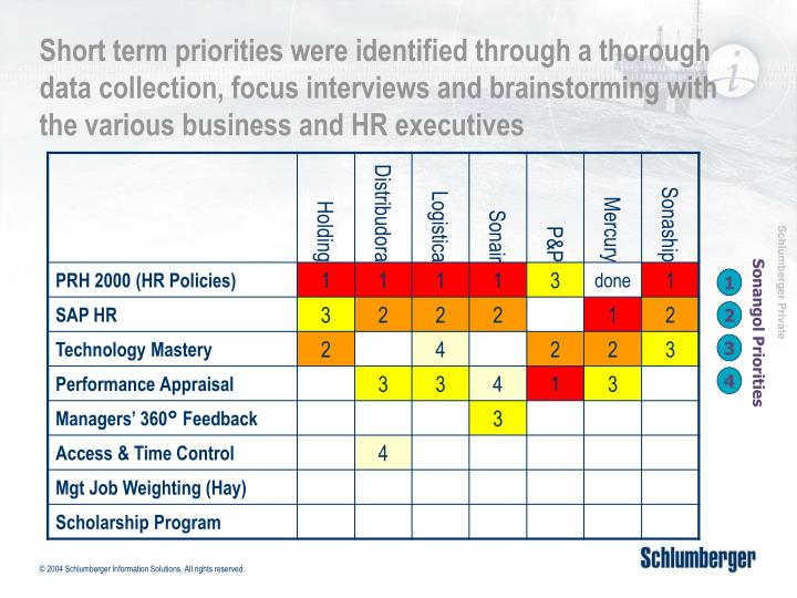 Short term priorities were identified through a thorough data collection, focus interviews and brainstorming with the various business and HR executives