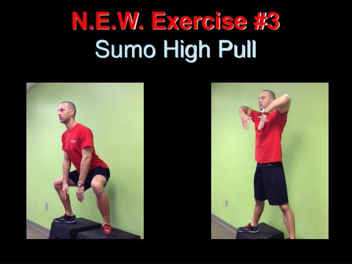 N.E.W. Exercise #3