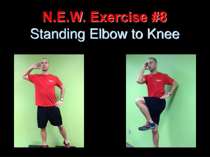 N.E.W. Exercise #8