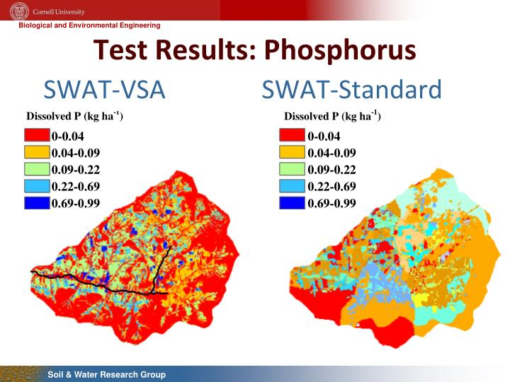 Test Results: Phosphorus