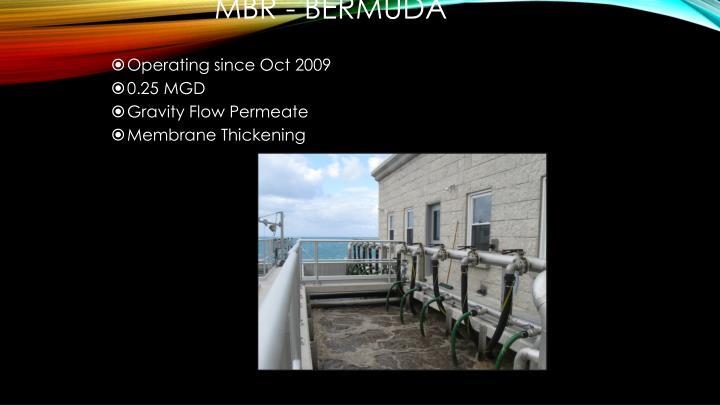 MBR - Bermuda