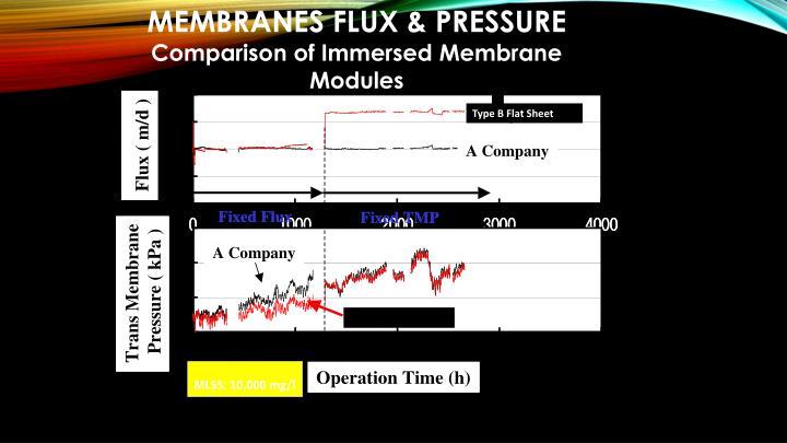 MEMBRANES FLUX & PRESSURE