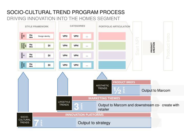 SOCIO-CULTURAL TREND PROGRAM PROCESS