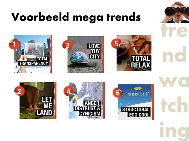 Voorbeeld mega trends