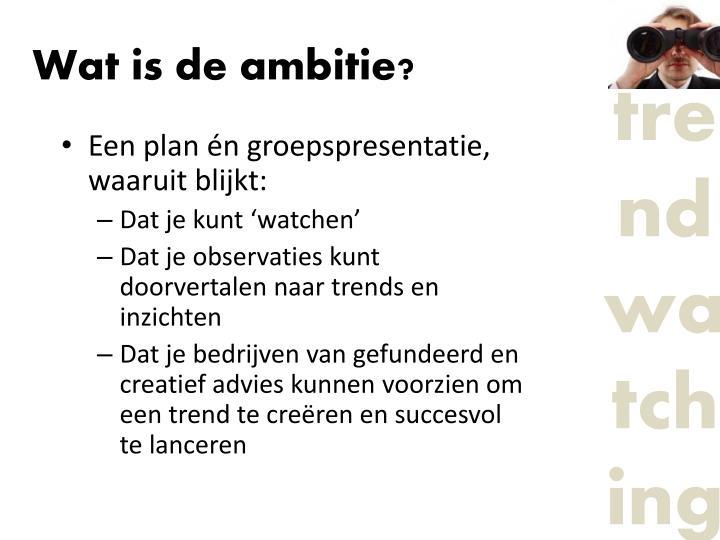 Wat is de ambitie?