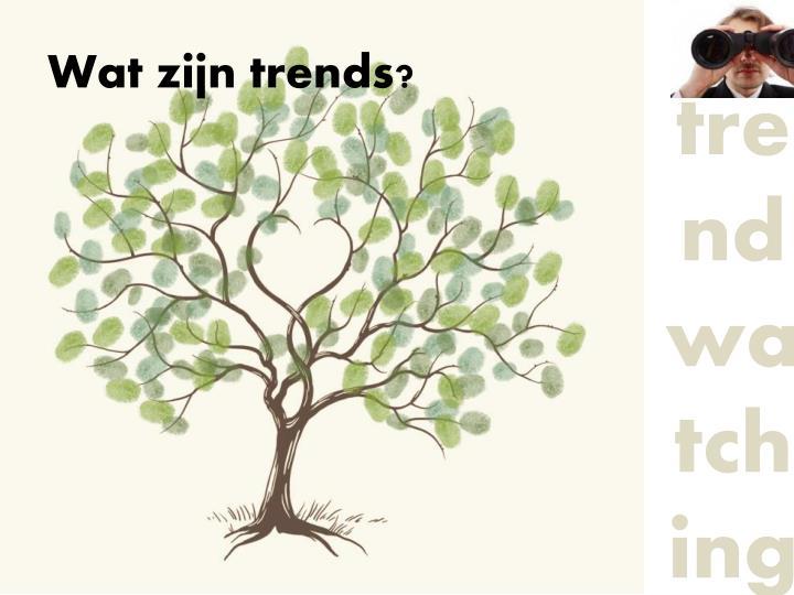 Wat zijn trends?