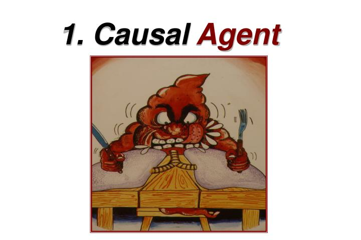1. Causal