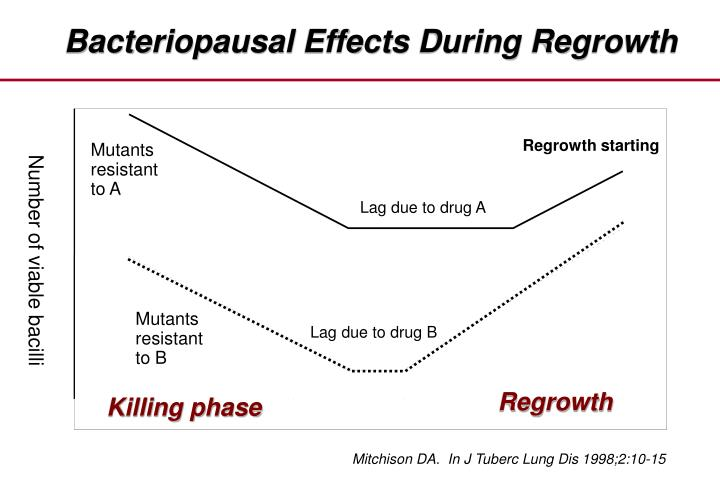 Bacteriopausal Effects During Regrowth