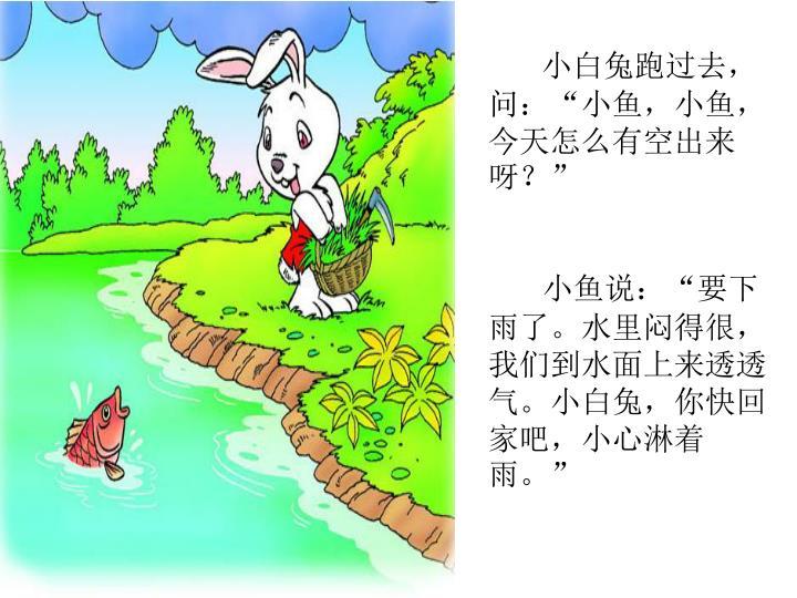 """小白兔跑过去,问:""""小鱼,小鱼,今天怎么有空出来呀?"""""""