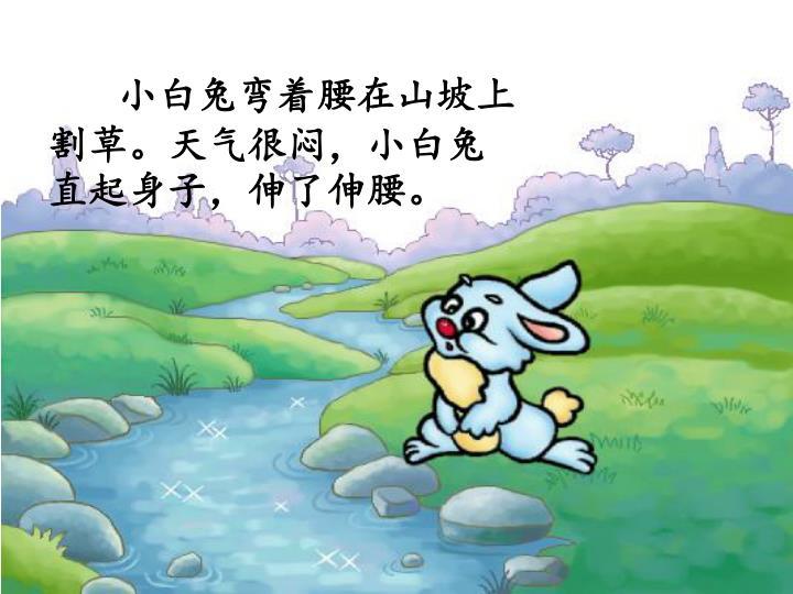 小白兔弯着腰在山坡上割草。天气很闷,小白兔直起身子,伸了伸腰。