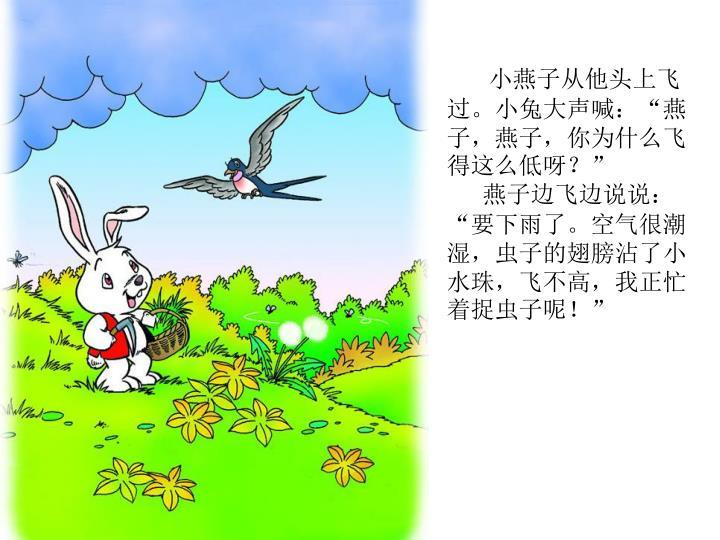 """小燕子从他头上飞过。小兔大声喊:""""燕子,燕子,你为什么飞得这么低呀?"""""""