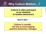 why culture matters3