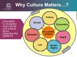 why culture matters4