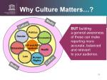 why culture matters5