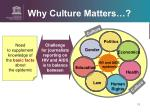 why culture matters6