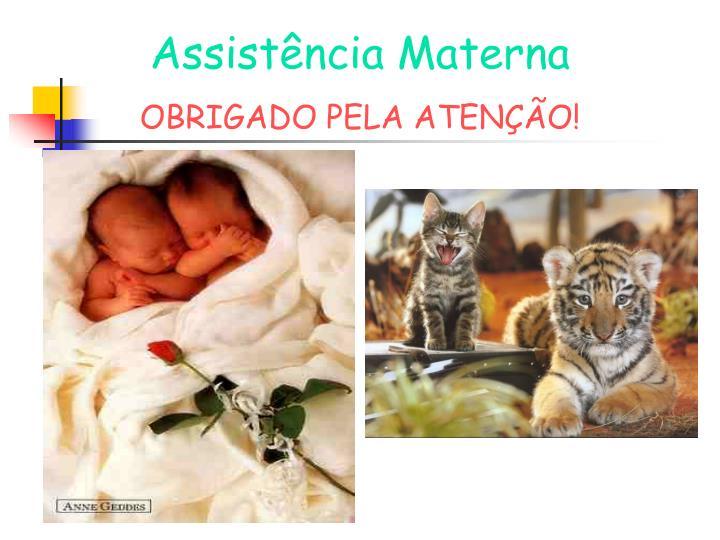 Assistência Materna