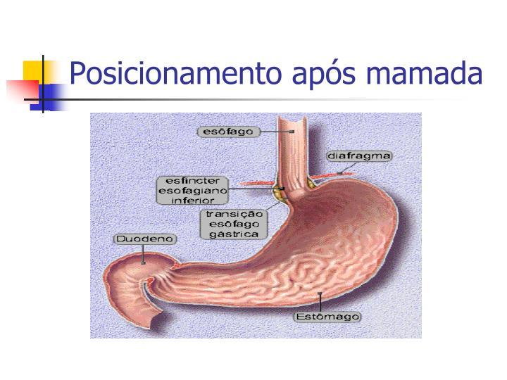 Posicionamento após mamada